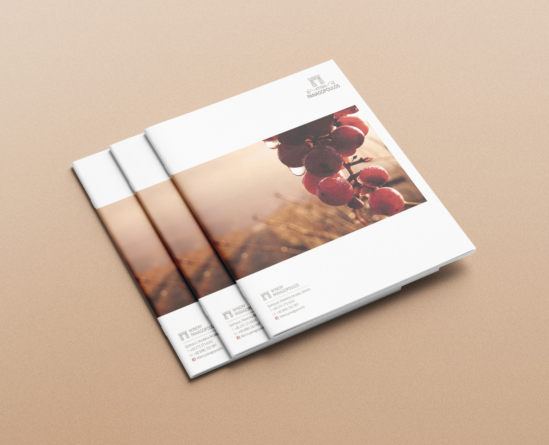brochure ktima panagopoulou